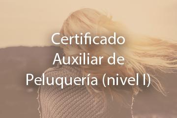 Certificado Auxiliar de Peluquería